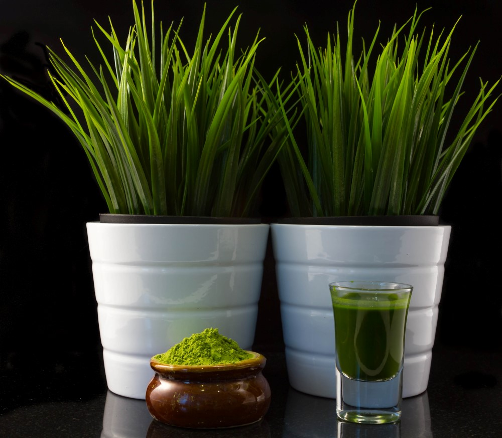 Where To Buy Wheatgrass Whole Foods