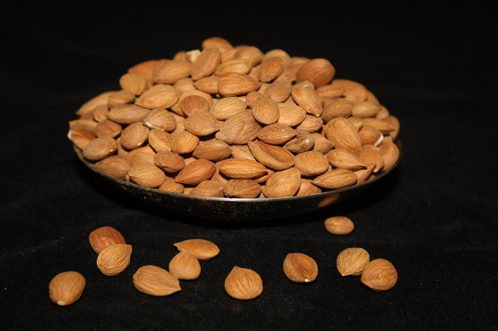 Organic Apricot Seeds Whole Foods