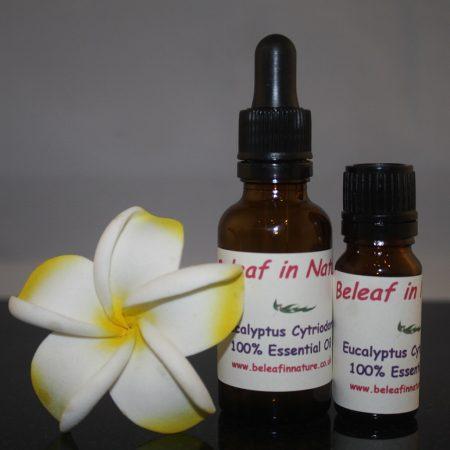 eucalyptus citriadora essential oil