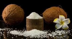 Premium Organic Dessicated Coconut