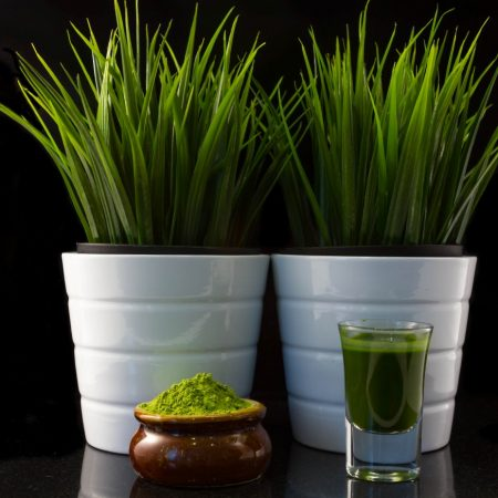 Premium Organic Wheat-Grass Powder